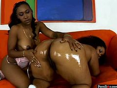 Filthy black trollops are wearing outright bikinis demonstrating their curvy bodies. Jessica takes off the bottom thrusting her butt up in the air while standing on her all four. Nikole applied much oil onto her ample rump so it is shinning.
