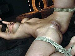 Welcome to gain delight along with steamy 21 Sextury xxx clip. Kinky slender and booty blondie screams too loud while being tied up with ropes. So spoiled brunette makes her suck a huge black dildo and fucks her wet pussy with it then.