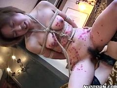 Dude, you just need to see this steamy Pornstar sex clip. Why? Cuz two Japanese lesbians go wild. Booty gal gets tied up with ropes and the other bitch fucks her hairy pussy while wearing strapon right on the floor.