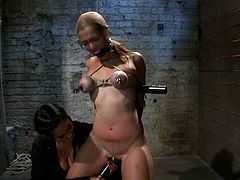 Purple Titties for Audrey Rose by Ropes and Pussy Toying in BDSM Vid