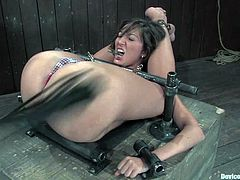 Angelica Saige is the gorgeous babe getting dominated and spanked in this BDSM video with torture, bondage and other fucked up shit.