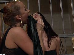 Cuddly amateur girl with perky tits is fond of tough sex games so she takes submissive position in filthy lesbian threesome sex games. Watch her getting pleased with sexual tortures.