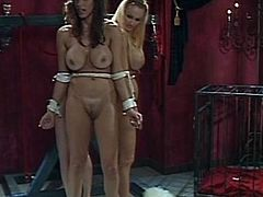 Mistress with no mercy ties up her sexy slaves