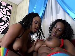 Like big butts sluts that have dark skin and a huge appetite for a lesbian fuck? Then check out Stacie and Kelly, two luscious chocolate milfs that know hot to fuck and give a great show in the same time. These fucking whores start with some tits and pussy licking before and that's just for the warm up!