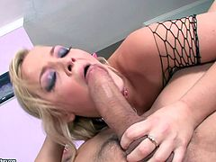 Curvaceous blonde chick in fishnet bodysuit gets her vagina licked. Then she gives passionate blowjob and gets fucked rough.