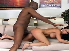 Sexy brunette milf Kendra Secrets wearing a fishnet top gives a hot blowjob to some black dude. Then they have some naughyt banging in cowgirl positin and Kendra begs the man to cum on her face.