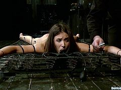 Beautiful brown-haired girl Casey Calvert lets someone put her into chains in a basement and play with her nice body.