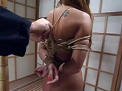 Brown-haired girl gets hog tied in the Japanese style room. Later on she the master twists her tits so that they become dark red.