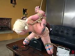 Playful Lorelei Lee gets undressed and tied up by another blonde chick. After that she gets her tight pussy toyed deep and hard.