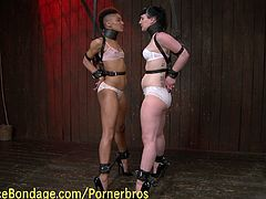 Watch a hot brunette and a naughty ebony belle obeying their mistress and playing hot lesbian bondage games for her amusement in this wild bdsm vid.