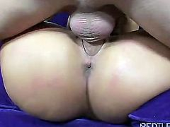 Work all my holes - Redtube