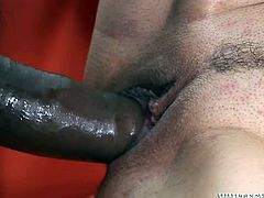 Cum-addicted slut gets her pussy brutally fucked by a huge black dick