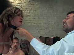 Salacious brown-haired chick Felony is having fun with Steve Holmes and hios friend in a basement. She shows her cock-sucking skills to the men and then lets them pound her pink cave and tight butt.