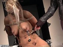 Mandy Bright is ready to taught hot blonde bitch Nikky Thorne a lesson. She got her all tied up and uses various toys in the dungeon to make that bitch cum!