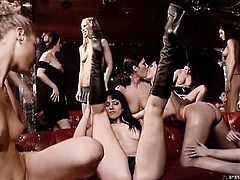 Stunning chicks take their clothes off and fuck in lesbian orgy video. These girl lick pussies and then use big dildos to make each other cum.