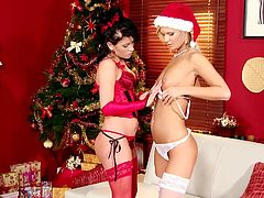 Cameron and Jess are two superb babes in Xmas hats and red stockings. They finger each others pussies near the Xmas tree.