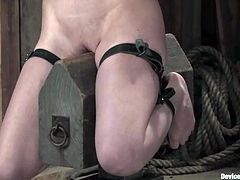 Sweet brunette and a girl with pink hair get tied up. They get gagged and then toyed with the fucking machine.