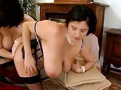 Chubby brunettes toy and fist asses in hot lesbian video