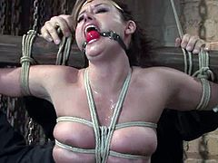 Isis Love gets her mouth and vag fucked by two studs in BDSM scene