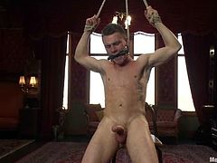 This is a freaking wild Gay BDSM porn video, featuring a horny faggot Drake Wild, who gets bondaged and tortured pretty hard.