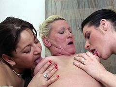 This young babe is in between two mature lesbians. She sucks on their nipples and kisses them. She makes out with the blonde granny lesbian and the other mature lesbian, sits on the couch, and masturbates herself.