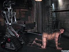 Sexy Tori Lane gets toyed by a machine in bondage video