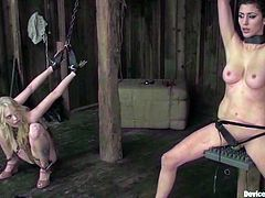 Brunette and blonde get tied up and then toyed hard