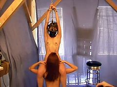 Two smoking hot sex slaves are enjoying what happens to them. They get chained and played with some vibrators in their delicious pussies. Nice BDSM!