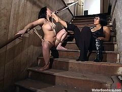 Two kinky Asian chicks make hot BDSM show. DragonLily gets her ass and pussy stuffed by her mistress. Then she also gets suspended upside down and shower with cold water.
