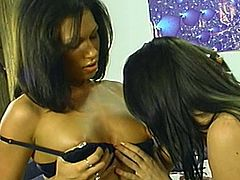 Two sexy dark-haired chicks are having fun indoors. They fondle each other passionately and then smash each other's pussies with dildos.