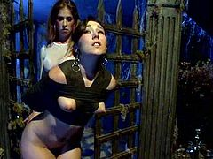 A submissive chick is playing BDSM games with Bobbi Starr and Felony. The mistresses bind the hussy and play with her tits and pussy before fucking her with a strapon.