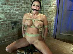 Tied up brunette chick gets her big tits fixed with mousetraps. Later on she also gets toyed with a vibrator.