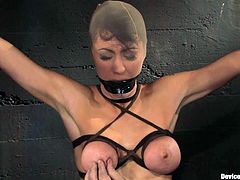 Busty brunette Princess Donna Dolore gets tied and hang up in some basement. Some guy pulls the bitch by the nipple but it only makes her maon with pleasure.