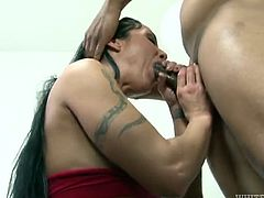 Passionate brunette girl with big boobs stands on her knees. She sucks big dick putting it deep in her mouth. Then she gets her ass spanked and pussy fucked rough. This hottie also gets facialed.