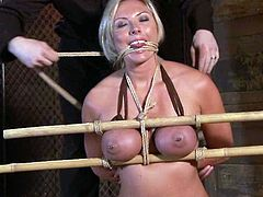Big breasted Skylar Price gets toyed after wax session