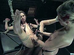Sexy girl in red lingerie gets tied up and spanked painfully. After that she gets suspended and whipped. Later on she also gets her clothespinned and toyed with a strap-on.