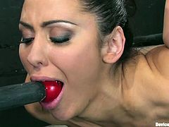 Gorgeous brunette Princess Donna Dolore is having fun with some dude in a basement. She gets tied up and enjoys a toy in her mouth.