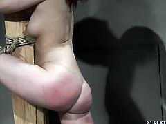 Mature does oral job for horny dude to enjoy