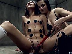 It's a femdom lesbian threesome with lots of bondage, torture and toying action for everyone involved to enjoy.