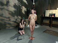 A fucking machine is used to anal fuck Tia Ling in this lesbian BDSM session with bondage, torture and more.