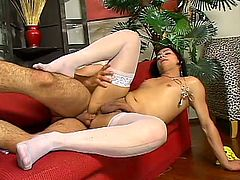 Nasty transsexual babe in stockings fucks the guy in the ass. After that this tranny also gets rammed in the ass.