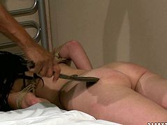 You are right here to be pleased with hot and exciting 21 Sextury bdsm video. Well-endowed black guy fucks brunette hoochie and spanks her ass.