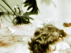 Alluring lady with hairy pussy enjoys full hardcore fuck in retro porn scene