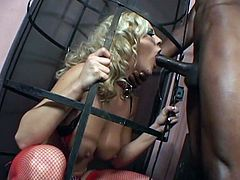 Check the slutty blonde Bree Olson getting bound and fucked in the dungeon by her black master. After he pounds her cunt, she's ready to be assfucked into heaven.