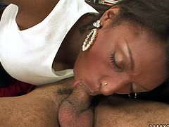 Big bottomed ebony ladyboy wearing fishnet stockings gets her ass hole rimmed and cock polished by one raunchy guy. Be pleased with big bottomed ebony slut for free.