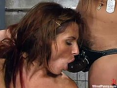 Ariana Jollee gets tormented and fucked by three girls in a cellar