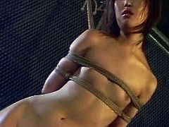 Kinky Japanese BDSM video with tied girls