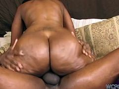 Obese black chick Ms Cleo known as a tremendous cock rider.You'll impressed cause plump brunette loves a nonstop fuck. Doggy style and dick riding are the things she likes the most.Enjoy!
