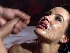 Sex addicted Lisa Ann takes her lingerie and stockings off. She gives skillful blowjob to several guys and then gets fucked rough in all holes. Eventually she gets facialed.
