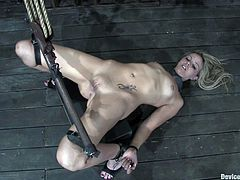 Two slim chicks get undressed and chained by their master. After that the blonde chick gets her tight pussy stretched to the limit.